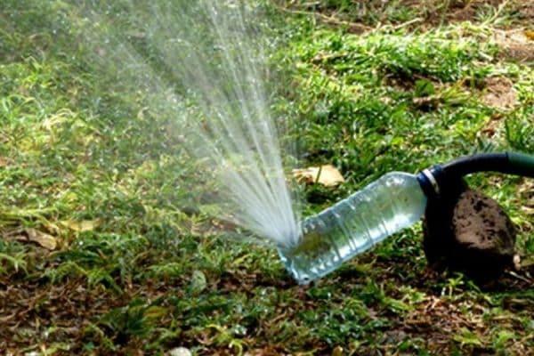 ý tưởng sáng tạo từ chai nhựa